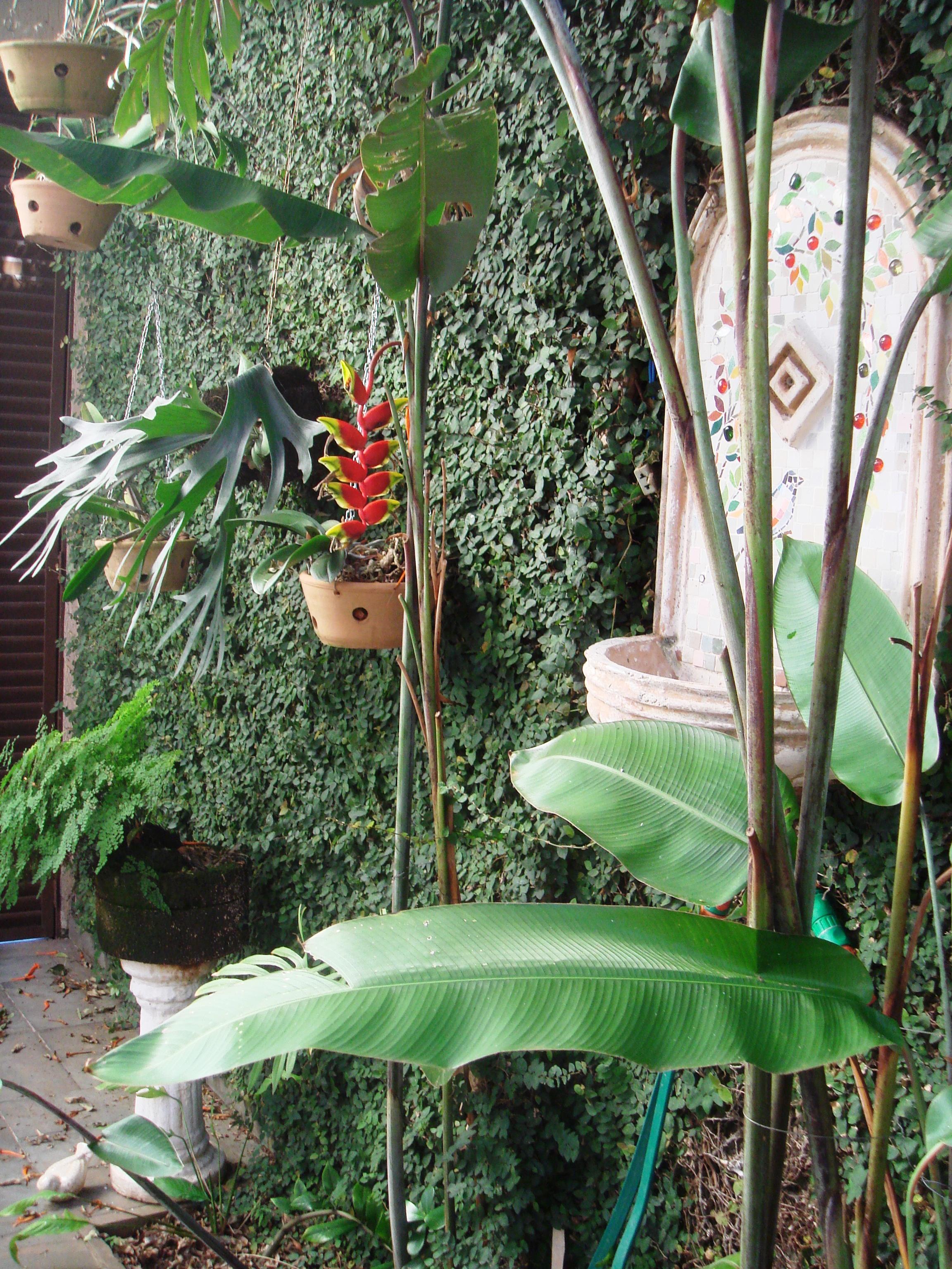 #66463A Jardim de inverno com fonte em Mosaico 2304x3072 px jardim de inverno no banheiro como fazer